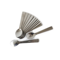 Acme Teaspoon Brushed Stainless