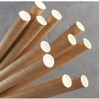 Straight Paper Straw Kraft Brown (Pkt 250) Green Bean
