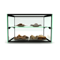 550mm Two Tier Glass Ambient Display case, EP10D 550 x 390 x 375, Sayl