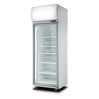 ICCOLD AU650 Single Door Chiller - 740x780x2195mmH