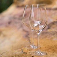 260ml Tempo Tasting Glass RG
