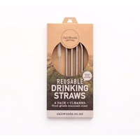 Bent Drinking S/S Reusable Straw (4 pack incl brush)